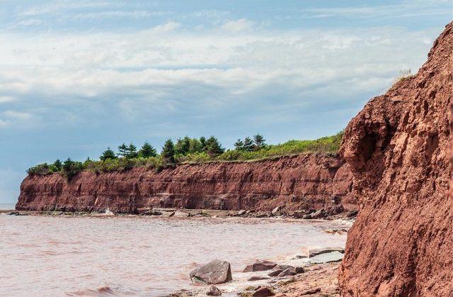 Качественную глину можно поискать в открытых карьерах или на обрывистых речных берегах