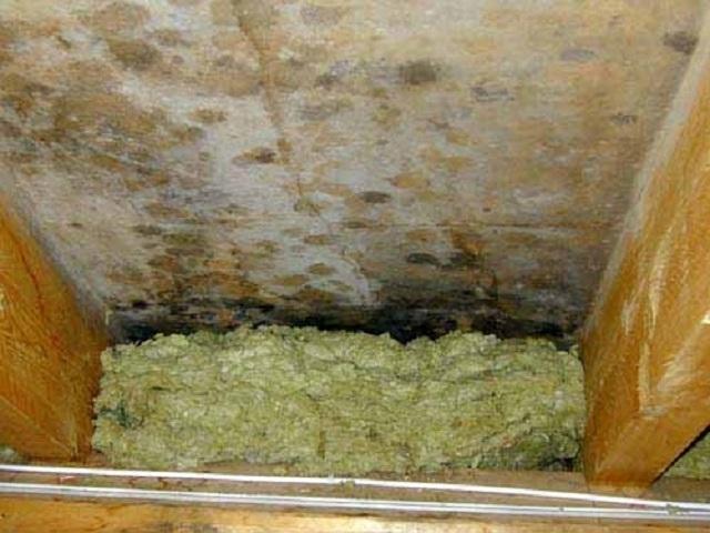 Плесень, образовавшаяся между утеплителем и стеной, из-за неправильного монтажа термоизоляционной конструкции.