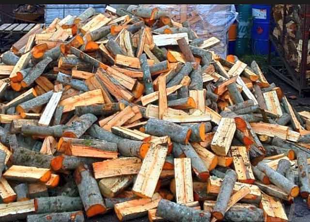 Ольховые дрова – отличное решение для отопления дома. Их сложно спутать с другими благодаря необычной расцветке древесины.