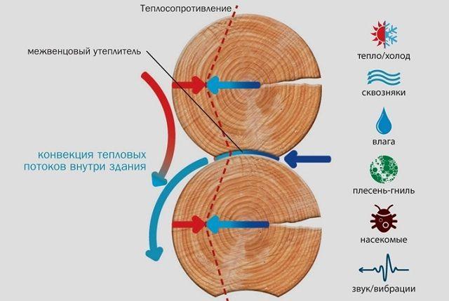 Схематично - к чему приводит некачественное утепление сруба