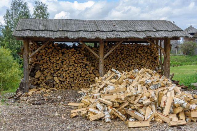 Одна из основных проблем – необходимость организации правильного хранения весьма больших по объему запасов дров, со всеми вытекающими трудностями.
