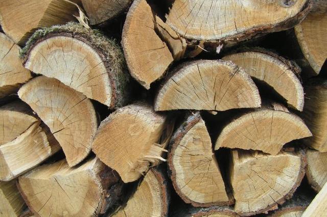 Хвойные дрова – далеко не лучший вариант для системы отопления дома