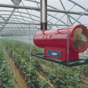Как защитить растения от холода: отопление теплицы своими руками