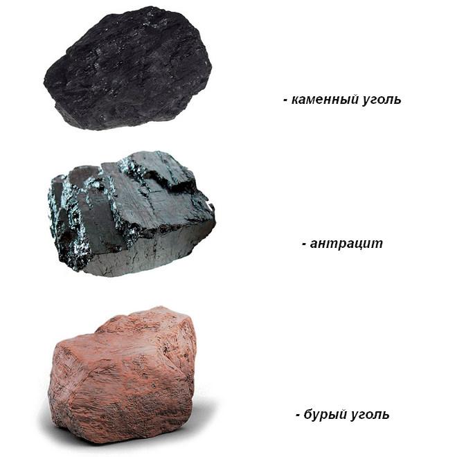 Разновидности угля для топки печи
